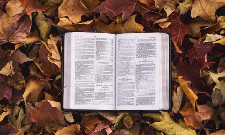 A Bíblia é a Palavra de Deus?
